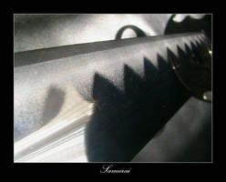 Samurai by wiccesoul