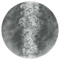 Specimen - 68 by SalHunter
