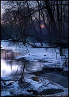 A Cold Night by Vitskog