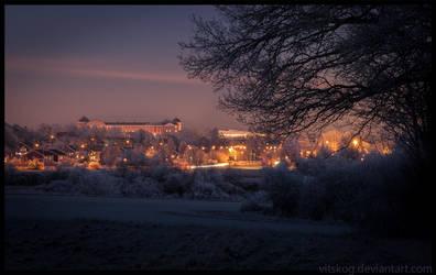 Uppsala From The West by Vitskog