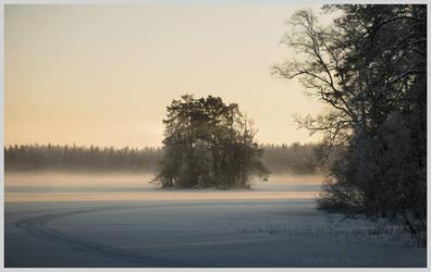 Winter Lake by Vitskog