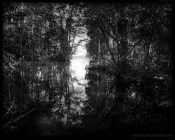 Summer Lake by Vitskog