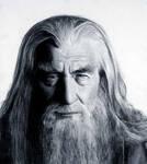 Gandalf the Grey by lithriel