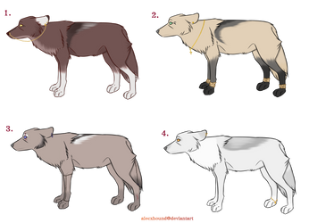 Wolf Adopt Sheet 1 (peircings and jewelry) by AlecxHound