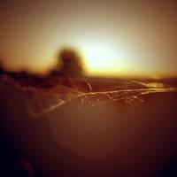 fire.island by sarah-marley