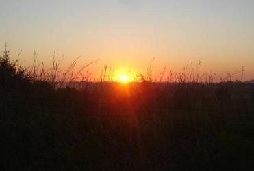sunday sunrise by rosecoloredglass