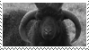 sheep stamp by odidos
