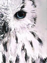 Snow Bark Owl by Meiphon