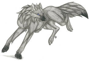 Swiftmask Wolf by CaptainMorwen