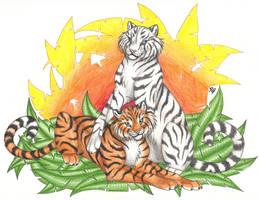 Tiger Sunset by CaptainMorwen