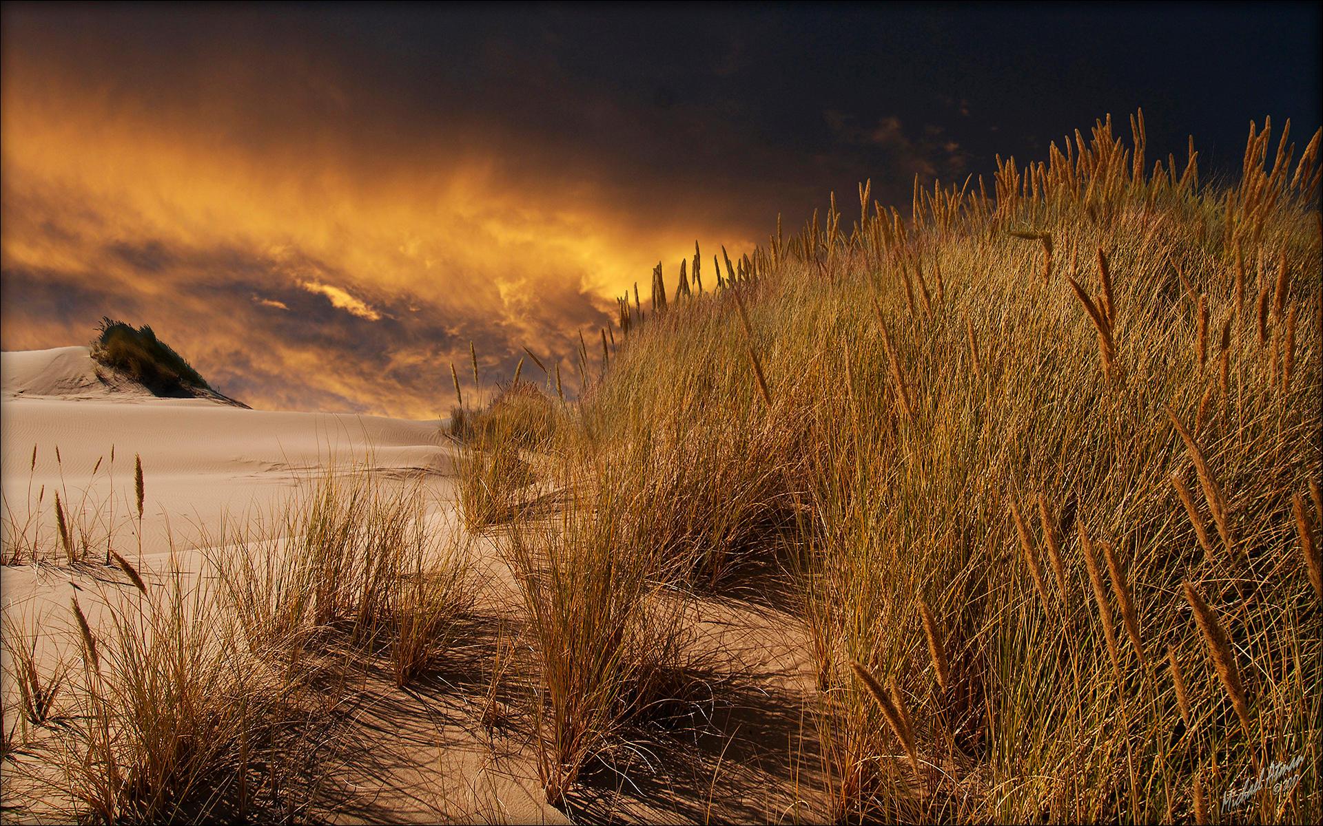 Beach Sunset by MichaelAtman