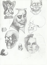 Practicing with Gary Faigin's Book on Expressions by Pedigri