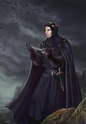 Simon de Belleme by Noldofinve