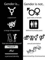 Gender is, Gender is not by snoogan2dope