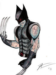 Wolverine bust color by MUFC10