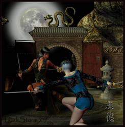 Moonlight Fight by DarkStormX1