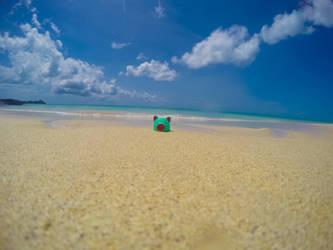 Chicharron in da Beach by cHoCoLaTe-DeViL