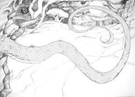 Dreamscapes 2 by dragonladych