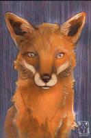 Foxie by dragonladych