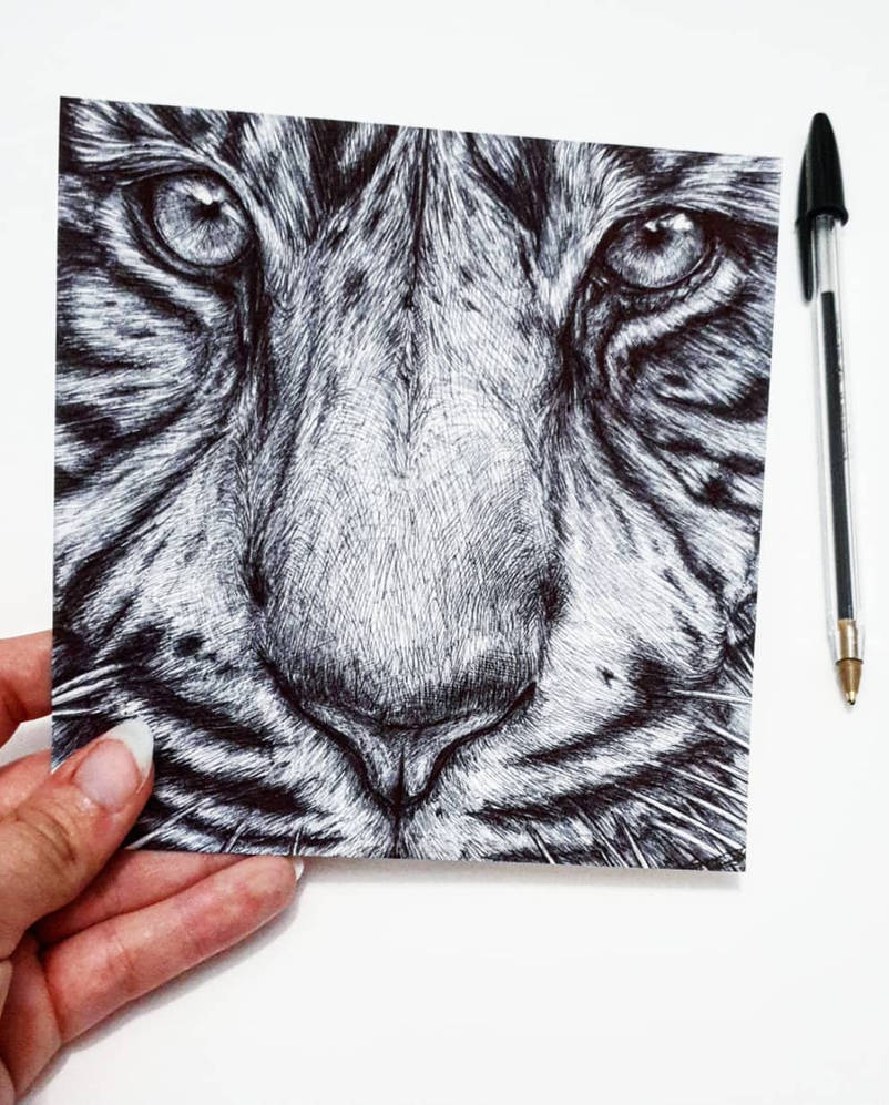 Tiger Close-up by Mixielion