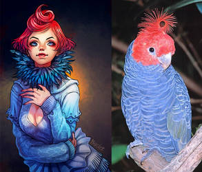 Cockatoo girl by Merolett