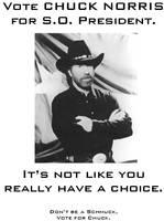 Vote Chuck Norris 2 by MjolnirIF