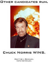 Vote Chuck Norris 3 by MjolnirIF