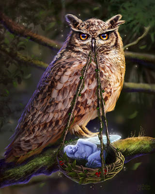 Owl's Lullaby by maril1
