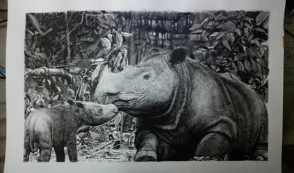 Nasir - sumatran rhino by nasiruddeen
