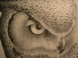 OWL by Sssyndrome