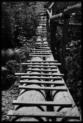 life path by cristusdeath