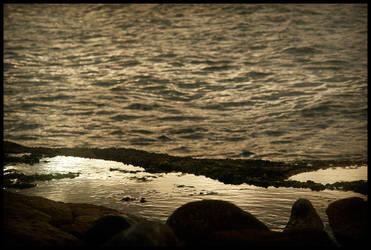 Bronze Waters by Pedrolifero