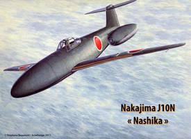 Nakajima J10Y1 Nashika by Bispro