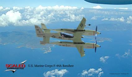 Scaled Composites F-44A Banshee (''Pond Fighter'') by Bispro