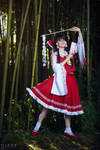Touhou Project: Eternal Shrine Maiden by JuriaScarlet