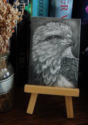 Eagle Portrait ATC by paintbigflowers