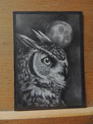 The Nightwatch ACEO by paintbigflowers