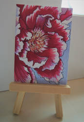 ACEO Petals 001 by paintbigflowers