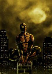 Spiderman by KaelNgu