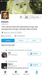 Twitter by Katzun