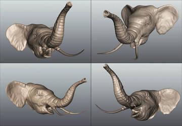 Elephant by cdrek1