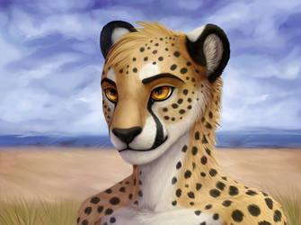 Cheetah by Coyrin