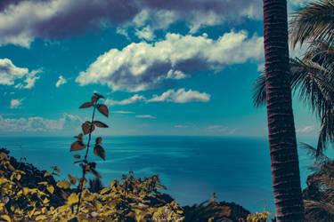 Paradise by Vladimyre06