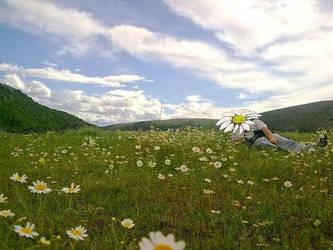 A manly flower by frosinaj
