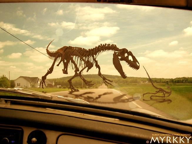 Dinos by myrkky