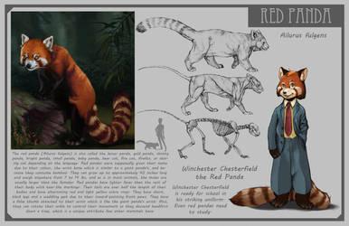 Red Panda by Phee