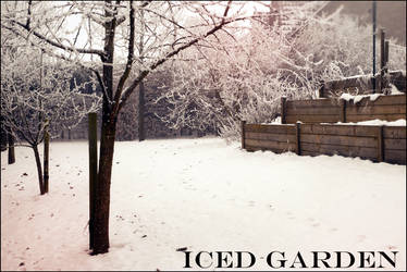 Iced Garden by Tilyoko