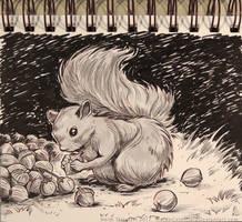 InkTober - Day 12 - A Squirrel by Heidi-Celestial