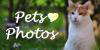 Pets photos - Logo by Arayashikinoshaka