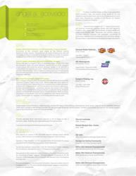 Resume 2008 by angelaacevedo